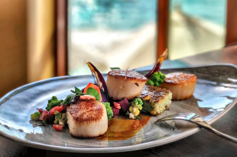 scallops dish at Splashes Restaurant at Surf & Sand Resort